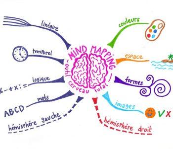 80_850x643_365983972_4109257439_2019121645-mind-map-cerveau-total